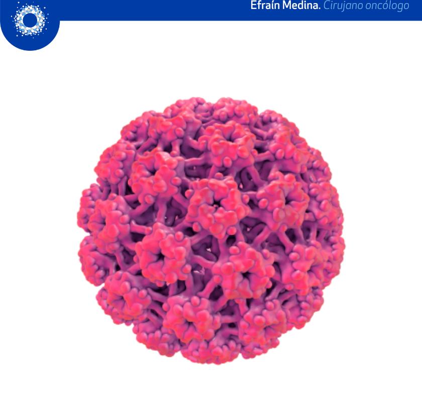 Virus del Papiloma y cáncer
